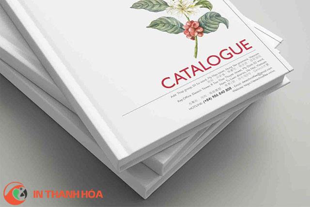 Các quý khách hàng có thể lựa chọn dịch vụ in catalogue lấy ngay của Công ty In Thanh Hóa